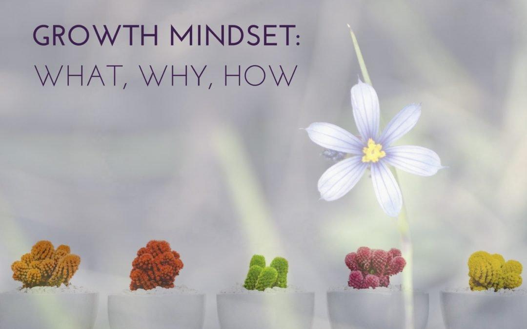 Get a Growth Mindset